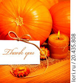 Купить «Thank you, thanksgiving greeting card with pumpkin decorations and warm candle light, holiday still life with white copy space», фото № 20435808, снято 5 октября 2011 г. (c) easy Fotostock / Фотобанк Лори