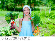 Купить «Vegetable garden - little gardener with bunch of organic carrots and beets», фото № 20489912, снято 9 июня 2013 г. (c) easy Fotostock / Фотобанк Лори