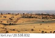 Купить «Rural landscape with grassland and trees on sunrise», фото № 20538832, снято 5 июля 2013 г. (c) easy Fotostock / Фотобанк Лори