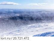 Купить «Сильная метель на вершине горы Ослянка. Вид на уральскую тайгу. Северный Урал», фото № 20721472, снято 14 марта 2015 г. (c) Евгений Ткачёв / Фотобанк Лори