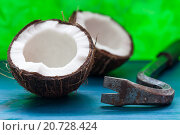 Простой способ разделить кокос с помощью лома. Стоковое фото, фотограф Виктор Колдунов / Фотобанк Лори