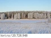Купить «Зимний подмосковный пейзаж», фото № 20728948, снято 29 декабря 2014 г. (c) Елена Коромыслова / Фотобанк Лори