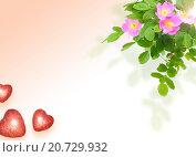 Купить «Рамка с шиповником и сердцами», фото № 20729932, снято 13 декабря 2019 г. (c) Boroda / Фотобанк Лори