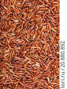 Купить «uncooked long-grain Red Kernel rice», фото № 20880892, снято 22 июля 2019 г. (c) PantherMedia / Фотобанк Лори