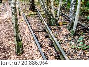 Купить «Schoeneberger Suedgelaende Nature Park», фото № 20886964, снято 22 мая 2019 г. (c) PantherMedia / Фотобанк Лори