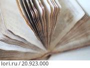 Купить «Psalms book from 19th century», фото № 20923000, снято 26 мая 2019 г. (c) PantherMedia / Фотобанк Лори