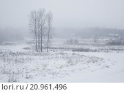 Купить «Сельский вид в холодное морозное утро в деревне», фото № 20961496, снято 8 января 2016 г. (c) Николай Винокуров / Фотобанк Лори