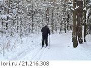 Купить «Мужчина идет по лыжне на беговых лыжах в зимнем лесу», фото № 21216308, снято 24 января 2016 г. (c) Елена Перминова / Фотобанк Лори