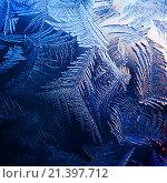 Купить «Морозный узор на зимнем окне», фото № 21397712, снято 24 января 2016 г. (c) ElenArt / Фотобанк Лори