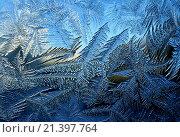 Купить «Морозный узор на зимнем окне», фото № 21397764, снято 25 января 2016 г. (c) ElenArt / Фотобанк Лори