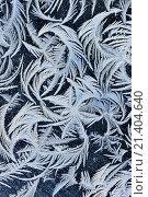 Купить «Frost patterns on a window, Greater Sudbury, Ontario, Canada.», фото № 21404640, снято 13 февраля 2015 г. (c) age Fotostock / Фотобанк Лори