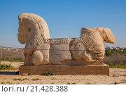 Купить «Stone Lion at Archaeology Site of Susa», фото № 21428388, снято 22 августа 2018 г. (c) age Fotostock / Фотобанк Лори