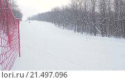 Купить «Горнолыжники, скоростной спуск на лыжах в лесу», видеоролик № 21497096, снято 27 января 2016 г. (c) Алексндр Сидоренко / Фотобанк Лори