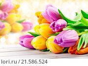 Купить «tulips», фото № 21586524, снято 21 февраля 2018 г. (c) easy Fotostock / Фотобанк Лори