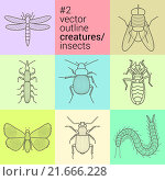 Купить «set outline, planimetric, contour, vector insects icons eps collection creatures kit», фото № 21666228, снято 21 июня 2018 г. (c) PantherMedia / Фотобанк Лори