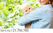 Купить «woman holding scottish fold cat over tree», фото № 21706780, снято 1 декабря 2015 г. (c) Syda Productions / Фотобанк Лори