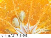 Купить «Orange fruit sliced isolated», фото № 21718608, снято 22 марта 2019 г. (c) PantherMedia / Фотобанк Лори