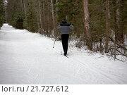 Лыжник в лесу. Стоковое фото, фотограф Олег Безруков / Фотобанк Лори