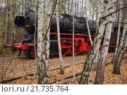 Купить «Berlin, Germany, a steam locomotive in the nature park Schoeneberger Südgelände», фото № 21735764, снято 18 ноября 2012 г. (c) Caro Photoagency / Фотобанк Лори