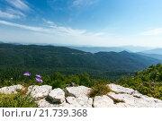Купить «Плато Лаго-Наки. Кавказ. Горы», фото № 21739368, снято 3 августа 2015 г. (c) Анатолий Типляшин / Фотобанк Лори