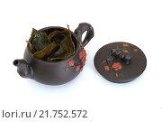 Купить «Чайник с зеленым чаем и крышкой», фото № 21752572, снято 8 февраля 2016 г. (c) Дмитрий Крамар / Фотобанк Лори