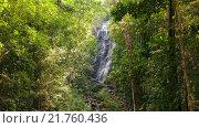Купить «Тропический водопад в лесу», видеоролик № 21760436, снято 10 февраля 2016 г. (c) Инга Ерамасова / Фотобанк Лори