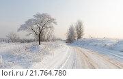 Купить «Зима в Московской области», фото № 21764780, снято 25 января 2016 г. (c) Ekaterina Andreeva / Фотобанк Лори