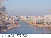 Купить «Зимний Тамбов. Первомайский мост», фото № 21775720, снято 23 июля 2019 г. (c) Карелин Д.А. / Фотобанк Лори