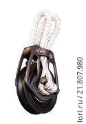 Купить «New cordage assortment on stand close up», фото № 21807980, снято 19 августа 2018 г. (c) Яков Филимонов / Фотобанк Лори