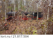 Berlin, Germany, a steam locomotive in the nature park Schoeneberger Südgelände (2012 год). Редакционное фото, агентство Caro Photoagency / Фотобанк Лори