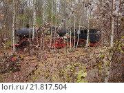 Купить «Berlin, Germany, a steam locomotive in the nature park Schoeneberger Südgelände», фото № 21817504, снято 18 ноября 2012 г. (c) Caro Photoagency / Фотобанк Лори