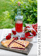 Купить «Cherry pie and cherry juice at the garden party table», фото № 21835216, снято 24 июля 2019 г. (c) BE&W Photo / Фотобанк Лори