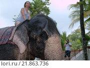 Купить «Женщина катается на слоне», фото № 21863736, снято 14 декабря 2018 г. (c) Некрасов Андрей / Фотобанк Лори