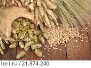 Купить «autumn fall grain harvest wheat», фото № 21874240, снято 12 декабря 2017 г. (c) PantherMedia / Фотобанк Лори