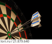 Купить «Dartboard with three darts in center target.», фото № 21879640, снято 23 октября 2019 г. (c) PantherMedia / Фотобанк Лори