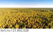 Купить «Вид на лес с высоты птичьего полета», фото № 21892028, снято 15 сентября 2014 г. (c) Юрий Губин / Фотобанк Лори