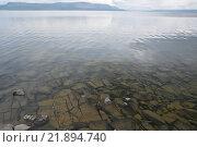 Купить «Озеро Кета на плато Путорана», фото № 21894740, снято 11 августа 2015 г. (c) Сергей Дрозд / Фотобанк Лори