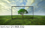 Купить «colorful wild tree concept of tv background», фото № 21968332, снято 25 марта 2019 г. (c) PantherMedia / Фотобанк Лори
