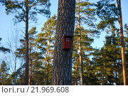 Купить «Red nesting box at a tree trunk», фото № 21969608, снято 20 июля 2019 г. (c) PantherMedia / Фотобанк Лори