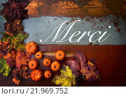 Купить «french word 'merci' (thank you) on wood», фото № 21969752, снято 21 января 2019 г. (c) PantherMedia / Фотобанк Лори