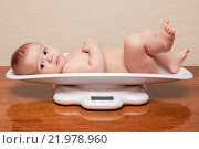 Ребенок лежит на весах. Стоковое фото, фотограф Ирина Столярова / Фотобанк Лори