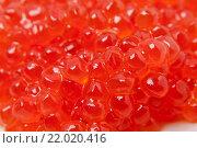 Купить «Фон из красной икры», фото № 22020416, снято 7 января 2016 г. (c) Алёшина Оксана / Фотобанк Лори