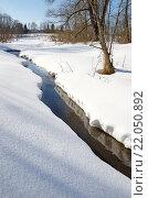 Купить «Река Скорогодайка в конце зимы», фото № 22050892, снято 28 февраля 2016 г. (c) Елена Коромыслова / Фотобанк Лори
