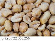 Купить «roasted peanuts», фото № 22060256, снято 22 июля 2019 г. (c) PantherMedia / Фотобанк Лори
