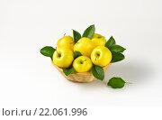 Купить «basket of yellow apples», фото № 22061996, снято 18 июля 2019 г. (c) PantherMedia / Фотобанк Лори