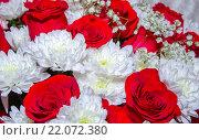Купить «Букет хризантемы с розами», фото № 22072380, снято 2 января 2016 г. (c) Валерий Апальков / Фотобанк Лори