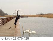Купить «Женщина смотрит на плавающих лебедей с променада», эксклюзивное фото № 22076428, снято 5 марта 2016 г. (c) Svet / Фотобанк Лори