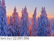 Купить «mountain winter landscape», фото № 22091056, снято 19 января 2020 г. (c) easy Fotostock / Фотобанк Лори