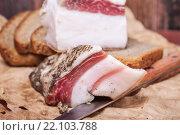 Купить «Сало с чёрным хлебом на столе», фото № 22103788, снято 26 ноября 2015 г. (c) Алёшина Оксана / Фотобанк Лори