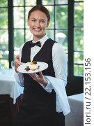 Купить «Smiling waitress holding a plate», фото № 22153156, снято 23 ноября 2015 г. (c) Wavebreak Media / Фотобанк Лори